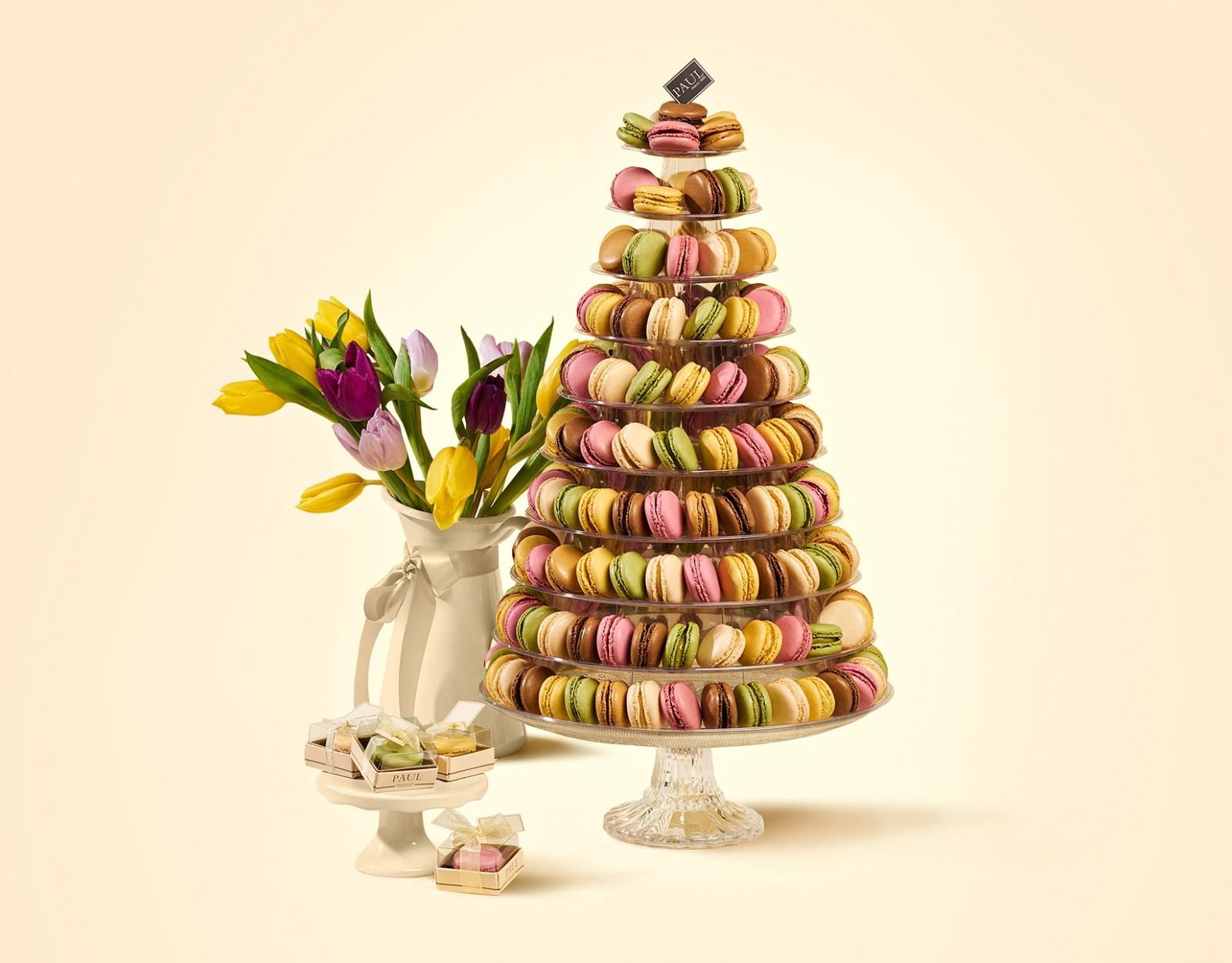 Sweets - Studio Țânțăreanu